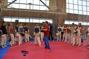 Подготовка кадетов по тхэквондо к Первенству Европы