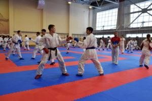 Молодежная команда по каратэ готовится к Чемпионату Европы